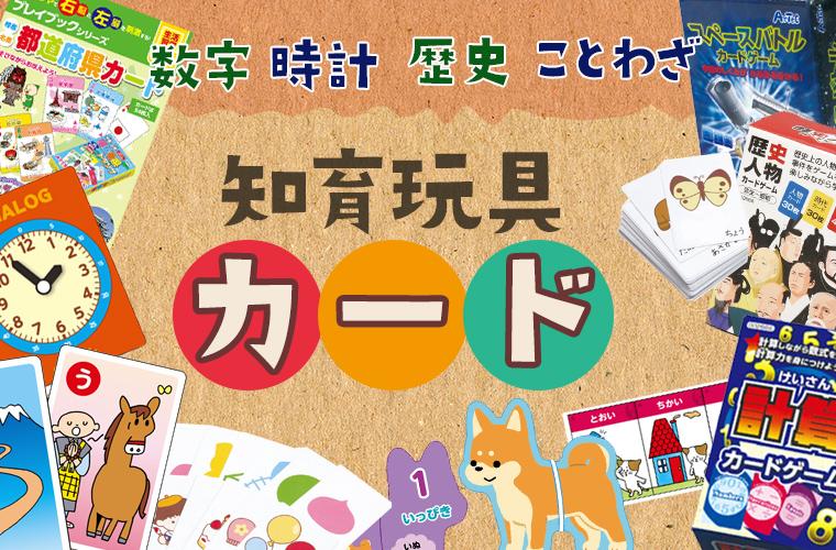 知育玩具カード